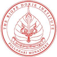 RDI_logo